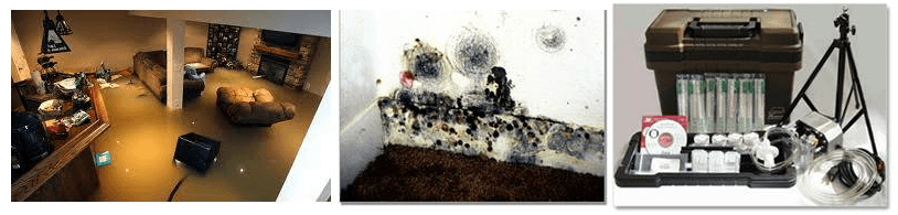 Flooding in finished basement can lead to mold growth